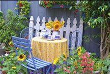 Gardening/outdoors / by Karon Knuist
