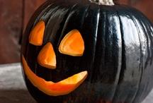 Halloween / by Debbie McGuire