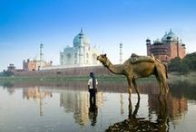 Incredible India / by Christa Avampato