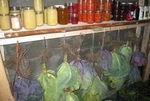 frugal food ideas / by Nancy Rogers