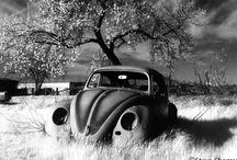 VW / by Wimpy Stickboy