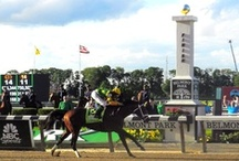 2013 Triple Crown Trail / by America's Best Racing