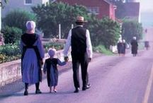Amish & Mennonites / by SC4 Library