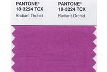Color of the Year 2014: Radiant Orchid / PANTONE Color of the Year 2014 Radiant Orchid 18-3224 / by Laura Geller Beauty
