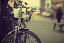 Bicycle Love / by My Soul
