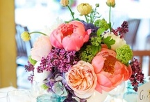 Flowers / by Heather (Multiply Delicious)