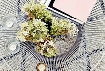 Coffee Table Styling / by Brittany Anderson