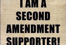 2nd Amendment  / by Saani Sanford