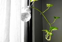 Tips de Bioguia, reutilizable y nice / No sabía como definir la categoría, la bioguía me ha dado muchas ideas y me ha ayudado a hacer más eficiente y bello lo que utilizo a diario en mi hogar. Quiero tener presente todas las ideas para ir realizándolas. (También algunas ideas de otras partes, pero en menor cantidad) / by LaFicha Santa