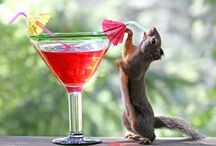 """NoT KiDs StUff- """" DrInKy Poo's / Beverages containing alcohol- not4kids stuff! / by debra gentosi-roberts"""