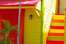 Coastal Living & Island Designs / by Carol Butler