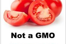 GMO Fact vs Fiction / There's a lot of GMO info online. How do you sort what's science from what's opinion? What's fact from what's fiction?  / by GMO Answers