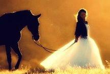 Horses / by vicki quad