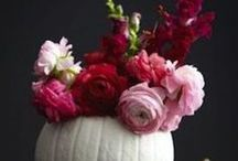 Florals / by Mary Hayward Spotswood