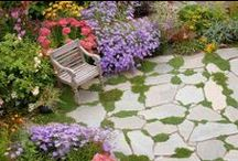 Gardening / Everything about Gardens / by inRandom
