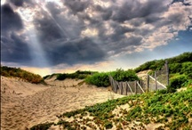 Provincetown / My favorite place on Cape Cod. / by Seven Colonial