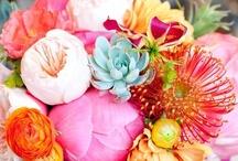 Floral Arrangements / by Jennifer Stacey