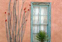 Windows and doors / by Ellie