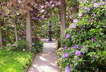 »(⁀v⁀)-» Gardens / by ༺• Christine •༻ Moore