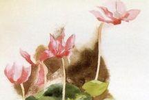 Aquarela - Flores / by Rita Heraclio
