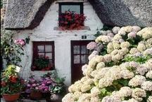 Cottages / by Sue Decker