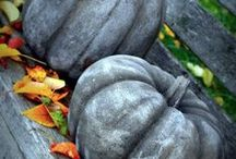 holiday--fall  Primitive / by Penny Warner