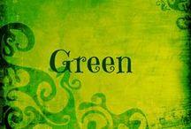 Green with Envy / by Jodi Lynn
