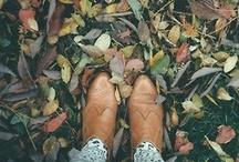 Fall Focus / by Tori Radday