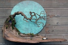 driftwood / by kay high