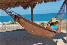 Outdoor Hammocks  / With 10,000 minutes in the week, we certainly have the power to take a few of those for ourselves, curl up or stretch out with a good book and relax.  Excellent source for hammocks, www.madeintheshadehammocks.com  #hammocks / by Lindy Smart