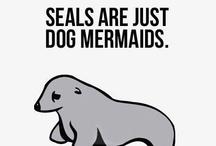 Ocean Humor / by Heal the Bay