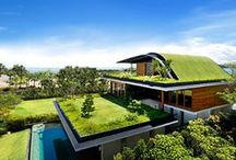 Green Design / Innovative ideas that are transforming the way we live and making the world a little greener.  / by Heal the Bay