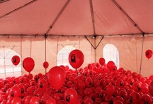 Light The Night: New Jersey / by Leukemia & Lymphoma Society