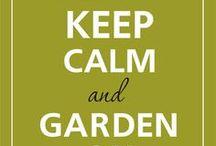 Garden Inspiration / Gardening ideas and tricks, patio inspiration, plants and critters / by Sassterhood™