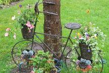 Yard & Garden  / Neat ideas for outside the home. Gardening, etc. / by Gluten Free Zen