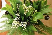 Wedding bouquets from The Barn Nursery, Chattanooga, TN / The Barn Nursery has an outstanding selection of potted flowers, permanent top-of-the line flowers, and lush ferns and foliage plants.  We carry  lush natural moss.  Our Eco-friendly succulents are the new way to embellish your wedding experience! With our plants and gift shop, we encourage you to personalize your wedding experience with DIY ideas. Check out more ideas on our blog   http://barnnursery.com/diy-wedding-ideas/diy-wedding-ideas-from-the-barn-nursery/ / by The Barn Nursery, TN.