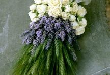 Flower Arrangements / by Vicky den Hertog