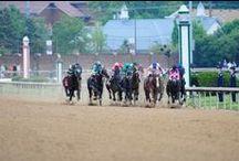 Derby Festival 2014 / by Louisville.com