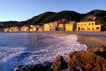Riviera delle Palme #Liguria / La Riviera Ligure di Ponente, la provincia di Savona,  paradiso per freeclimbers, trekkers e bikers, per famiglie con bambini, per chi ama la spiaggia, una vacanza ricca di proposte, alla scoperta della storia e delle tradizioni liguri / by Liguria
