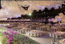 Wedding Dream  / by Alexis Jones