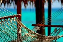 A BEACH & A Breeze / Nothing better then a beach & a breeze....oh yea & a beverage!!! / by Sadi Bosco