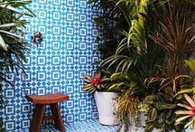 Garden & Outdoor Space / by Louise Amanda