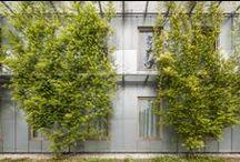 Essencial architecture / by Jordi Quetglas