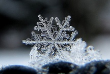 Snowflakes / by Kathy