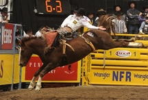 2012 National Finals Rodeo / by ontherodeoroad