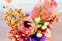 Florals I Love / by B.WED Photography