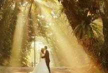 Nice Light / by Colorado Wedding Photography