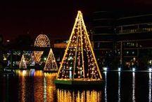 Festive Light / by FamilyPoolFun