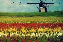 Holland / by Easter Bell