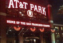 SF Giants / Go Giants! Posey, Belt, Cain, Pagan, Crawford, Blanco, Scutaro, Pence, Sandoval, etc... <3 / by Toni Enos